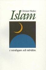 bokomslag Islam i vardagen och världen
