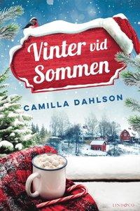 bokomslag Vinter vid Sommen