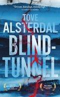 bokomslag Blindtunnel
