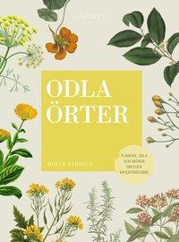 bokomslag Odla örter : planera, odla och skörda din egen kryddträdgård