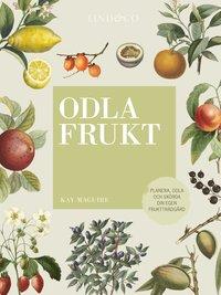 bokomslag Odla frukt : planera, odla och skörda din egen fruktträdgård