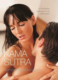 bokomslag Kamasutra - njutningens sköna konst
