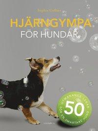 bokomslag Hjärngympa för hundar