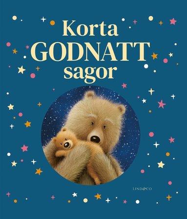 bokomslag Korta godnattsagor