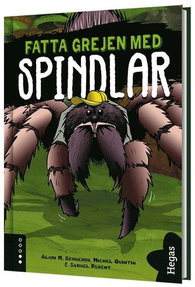 bokomslag Fatta grejen med spindlar