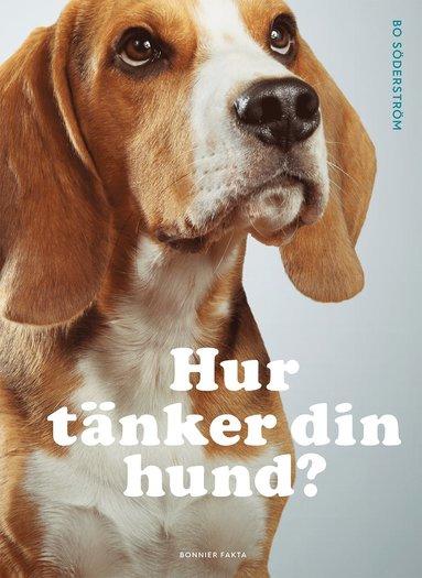 bokomslag Hur tänker din hund?