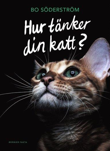 bokomslag Hur tänker din katt?