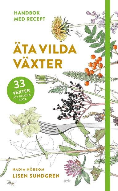 bokomslag Äta vilda växter : 33 växter att plocka och äta