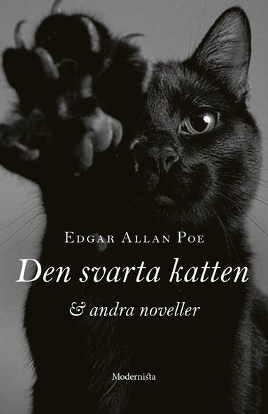 bokomslag Den svarta katten och andra noveller