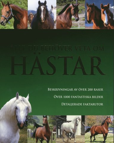 bokomslag Allt du behöver veta om hästar