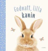 bokomslag God natt, lilla kanin