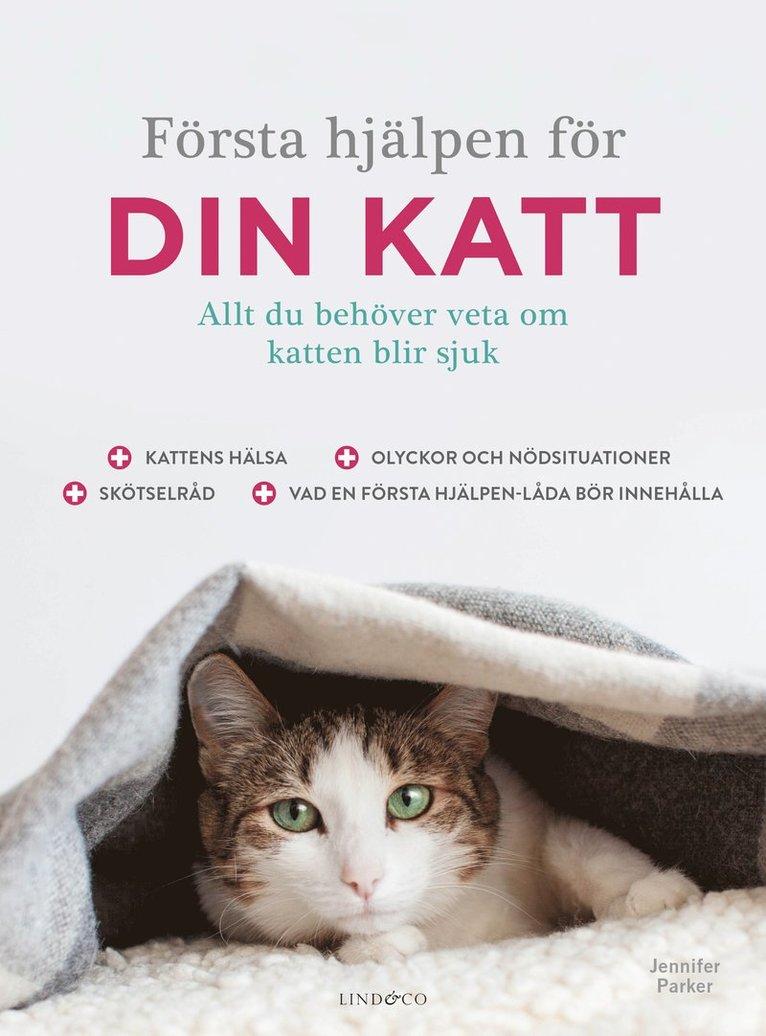 Första hjälpen för din katt 1