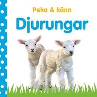bokomslag Peka och känn - Djurungar