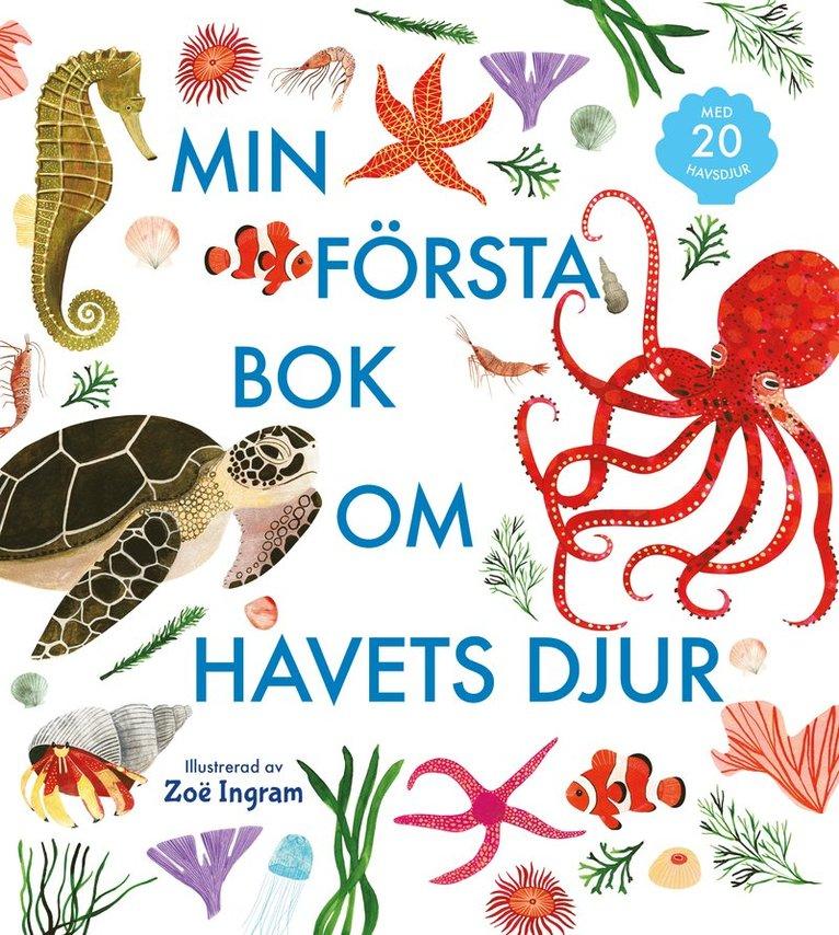 Min första bok om havets djur 1