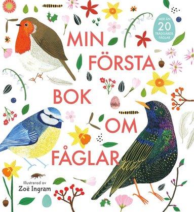 bokomslag Min första bok om fåglar
