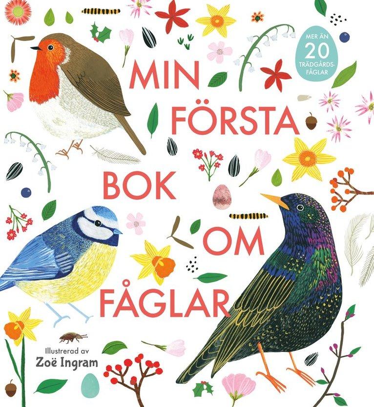Min första bok om fåglar 1