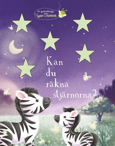 bokomslag Kan du räkna stjärnorna? En godnattsaga som lyser i mörkret