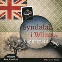 bokomslag Syndafall i Wilmslow