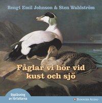 bokomslag Fåglar vi hör vid kust och sjö