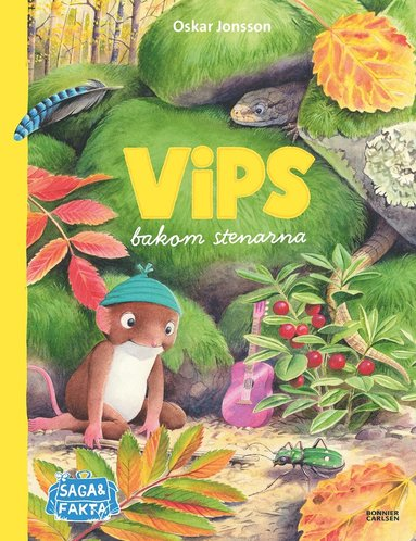 bokomslag Vips bakom stenarna