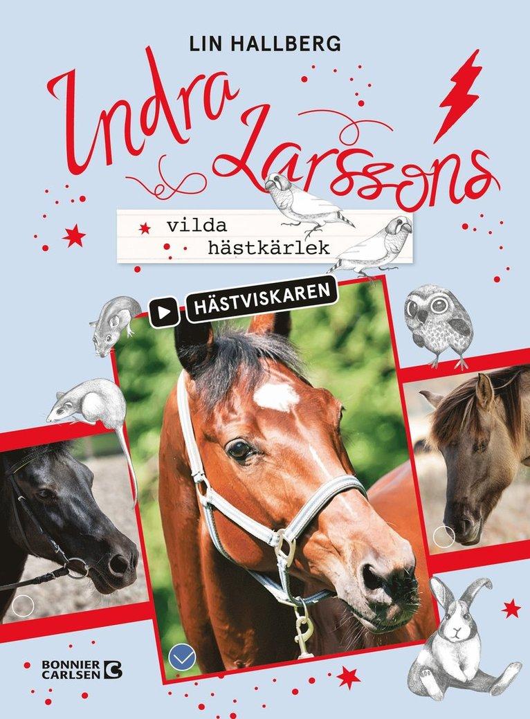 Indra Larssons vilda hästkärlek 1
