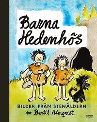 bokomslag Barna Hedenhös : bilder från stenåldern