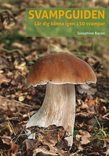 bokomslag Svampguiden : lär dig känna igen 150 svampar