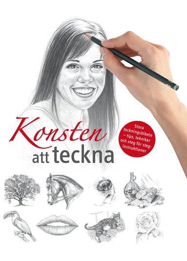 bokomslag Konsten att teckna