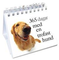 bokomslag 365 dagar med en trofast hund
