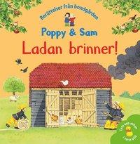 bokomslag Ladan brinner!