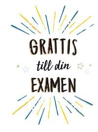bokomslag Grattis till din examen