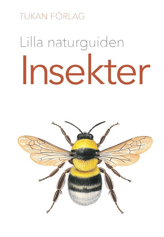 Lilla naturguiden: insekter 1
