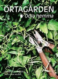 bokomslag Örtagården - odla hemma