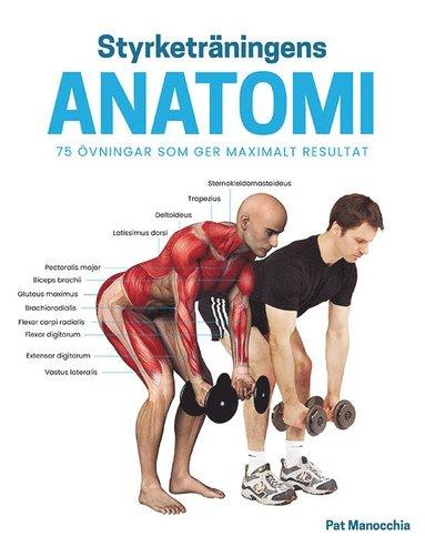 bokomslag Styrketräningens anatomi : 75 övningar som ger maximalt resultat