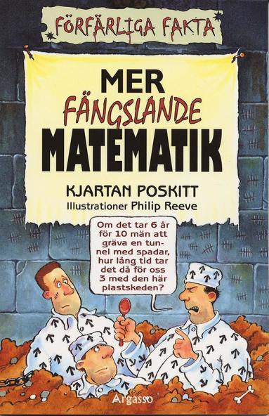 bokomslag Mer fängslande matematik
