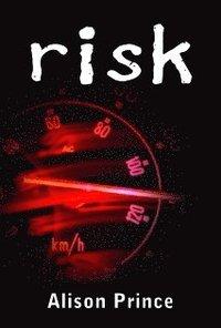 bokomslag Risk