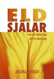 bokomslag Eldsjälar : om att vakna upp och ta nästa steg