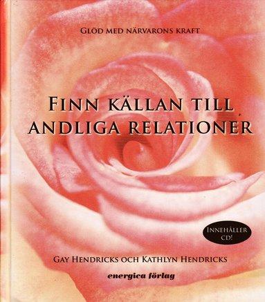 bokomslag Finn källan till andliga relationer