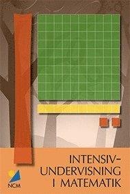 bokomslag Intensivundervisning i matematik