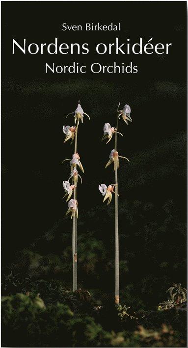 bokomslag Nordens orkidéer : en fältguide / Nordic Orchids : a field guide