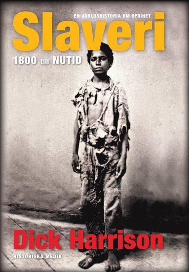 bokomslag Slaveri : 1800 till nutid
