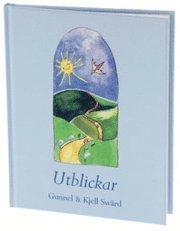 bokomslag UTBLICKAR (Blickar)
