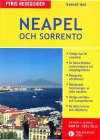 bokomslag Neapel och Sorrento (med karta)