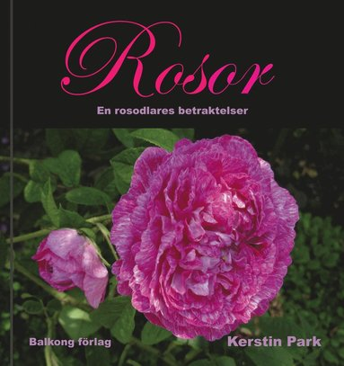 bokomslag Rosor : en rosodlares betraktelser