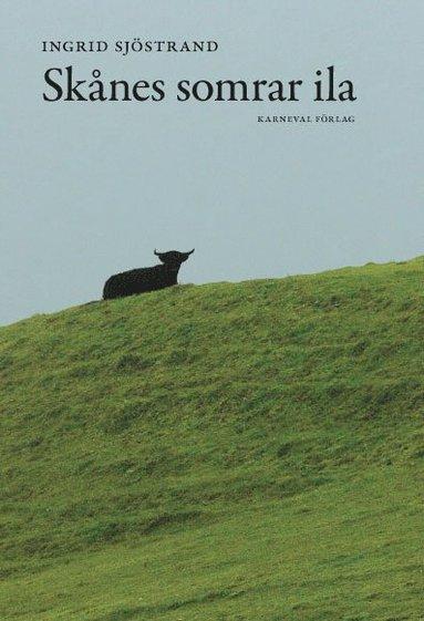 bokomslag Skånes somrar ila