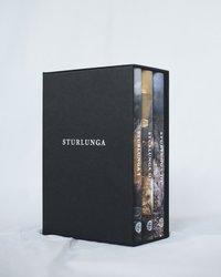 bokomslag Sturlunga I-III