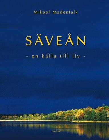 bokomslag Säveån : en källa till liv