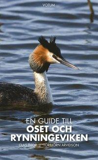 bokomslag En guide till Oset och Rynningeviken