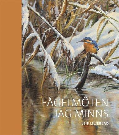 bokomslag Fågelmöten jag minns