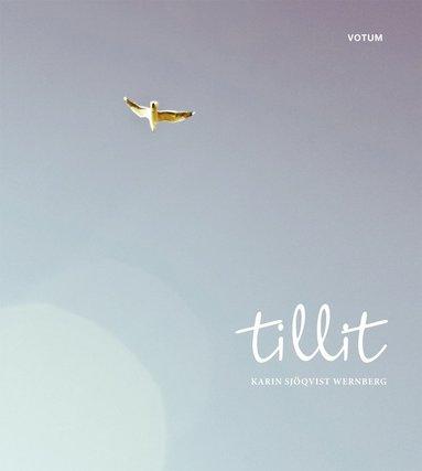 bokomslag Tillit